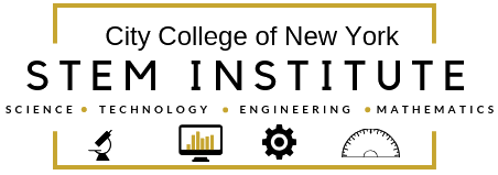 STEM Institute Logo